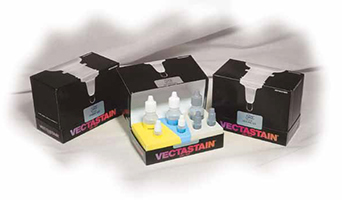 VECTASTAIN_ABC_Kits