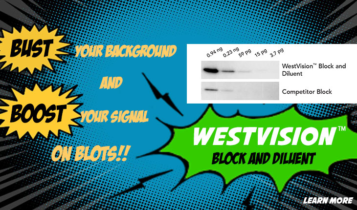 WestVision Block and Diluent for Western Blots